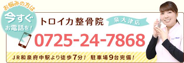 0725247868