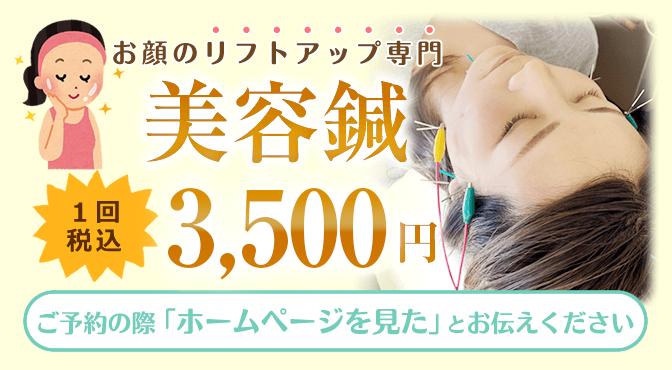 美容鍼1回税込3300円